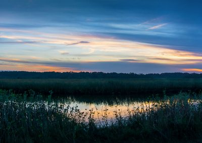 Ormond Loop Marsh
